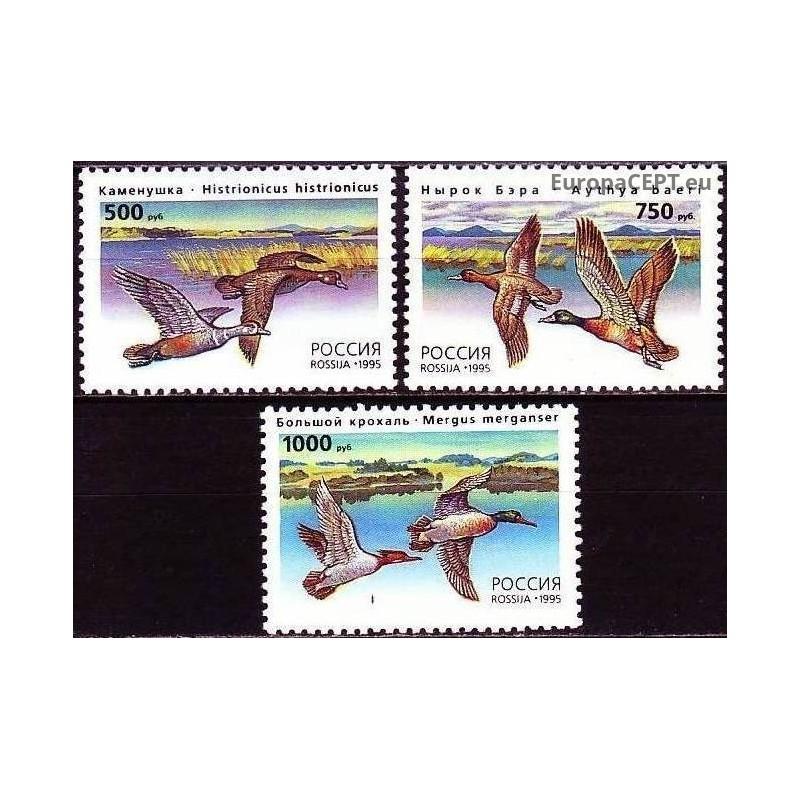 St Vinsentas ir Grenadinai 1988, Kriketas
