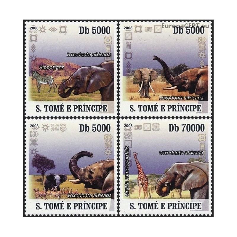Marokas 1974, Aplinkos apsauga (pantera)