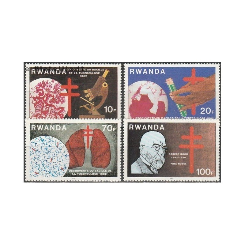Tailandas 1978-1980, Raudonasis Kryžius