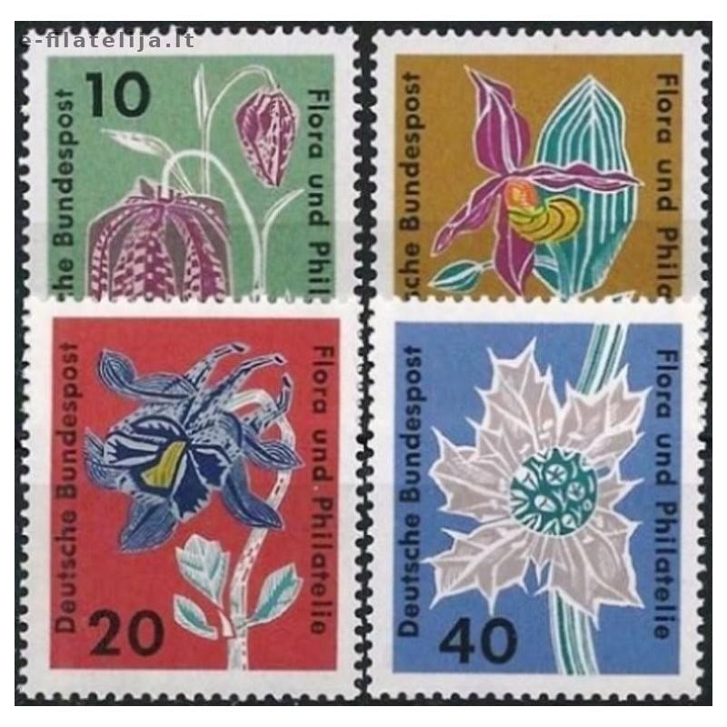 Mozambikas 1962, Miestų istorija