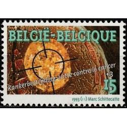 Belgija 1993. Sveikatos...