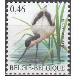 Belgija 2006. Paukščiai