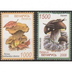 Belarus 2008. Mushrooms