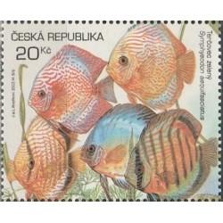 Čekija 2003. Žuvys