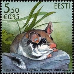 Estonia 2010. The Garden mouse