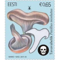 Estonia 2017. Mushrooms
