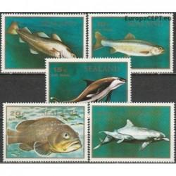 Sealand 1970. Fishes...