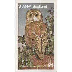 Scotland 1977. Tawny Owl