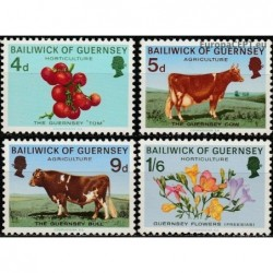 Guernsey 1970. Agriculture...
