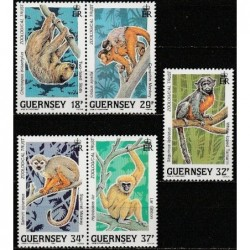 Guernsey 1989. Monkeys