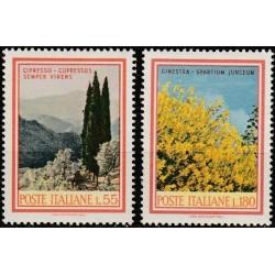 Italija 1968. Medžiai