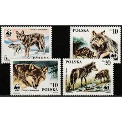 Poland 1985. Wolfs