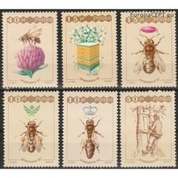 Poland 1987. Honeybees