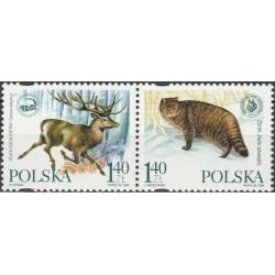 Poland 1999. Environment...