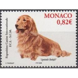 Monaco 2005. Dogs