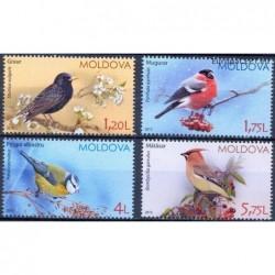 Moldavija 2015. Paukščiai