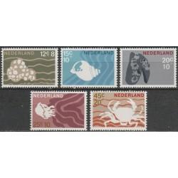 Netherlands 1967. Marine life