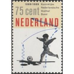 Nyderlandai 1989. Futbolo...