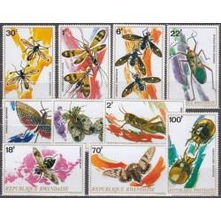 Rwanda 1973. Insects