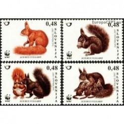 Slovėnija 2007. Voverės
