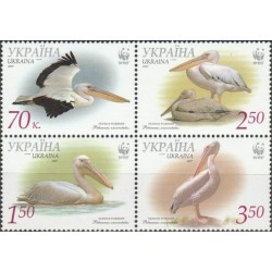 Ukraine 2007. Pelicans