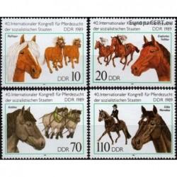 East Germany 1989. Horses