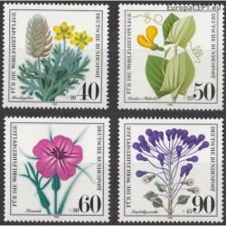 Germany 1980. Wild flowers