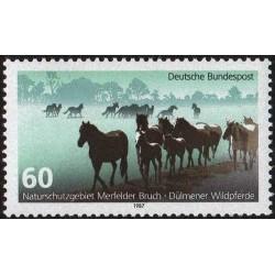 Germany 1987. Wild horses