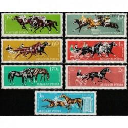 Vengrija 1961. Žirgų sportas