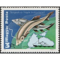 Vengrija 1979. Aplinkos...