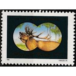 Hungary 1981. Hunting