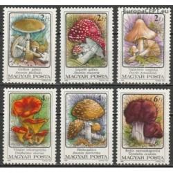 Hungary 1986. Mushrooms