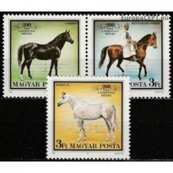 Hungary 1989. Horses