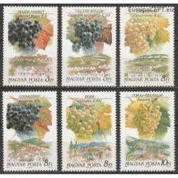 Hungary 1990. Winemaking