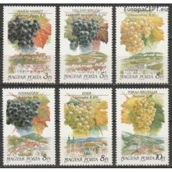 Vengrija 1990. Vyno gamyba