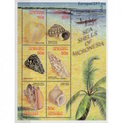 Micronesia 2001. Sea Shells