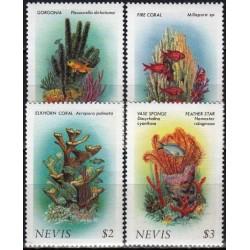 Nevis 1986. Corals