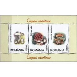 Rumunija 2003. Nuodingi grybai