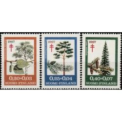 Suomija 1967. Miško medžiai...