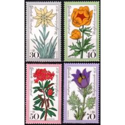 Germany 1975. Flowers