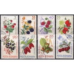 Romania 1964. Forest beries