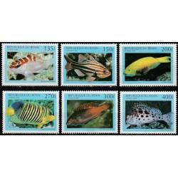 Beninas 1997. Žuvys