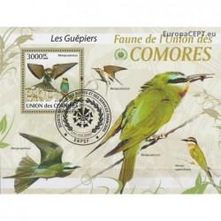 Comoros 2009. Birds...
