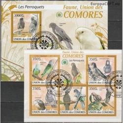 Comoros 2009. Parrots
