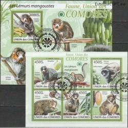 Comoros 2009. Monkeys