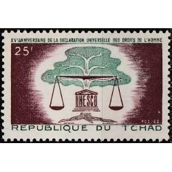 Čadas 1963. Žmogaus teisių...