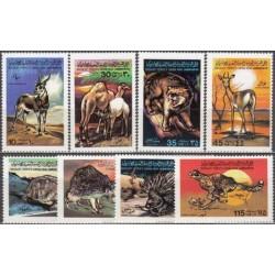 Libya 1979. Animals