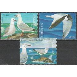 Namibia 2006. Marine birds