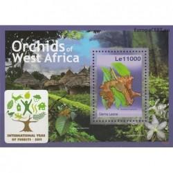 Sierra Leone 2011. Orchids
