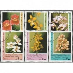 Somalia 1998. Orchids